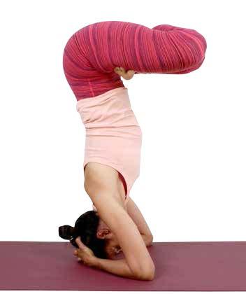 padma sirsasana/ lotus headstand variation  asana